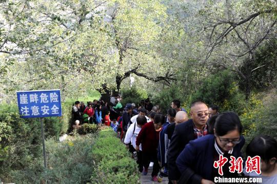 陕西延安游人如织今日接待游客117万余人次