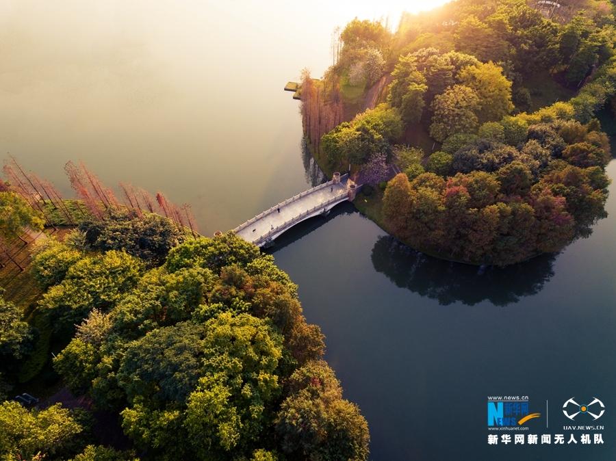 """俯瞰亚洲艺术公园感受都市""""诗意盎然"""""""