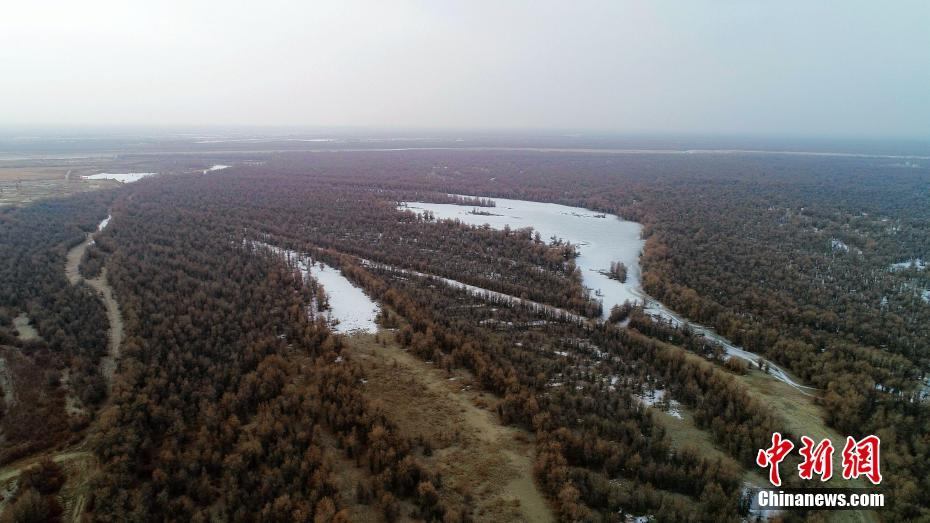 中国最长内流河塔里木河千里冰封